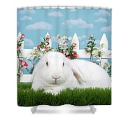 Portrait Of An Albino Lop Shower Curtain
