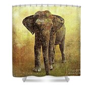 Portrait Of An Elephant Digital Painting With Detailed Texture Shower Curtain