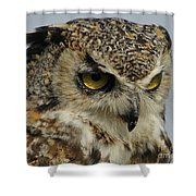 Portrait Of An Owl.  Shower Curtain