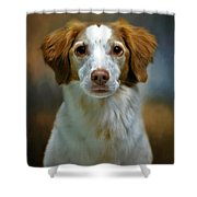 Portrait Of Gracie Shower Curtain by Stephanie Calhoun