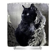 Portrait Of Smoky  Shower Curtain