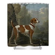 Portrait Of The Duke Of Hamilton Hound Shower Curtain