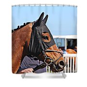 Portrait Of The Horse In The Hood Shower Curtain