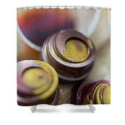 Portwine Infused Chocolates Shower Curtain