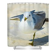 Pose For The Camera  Shower Curtain