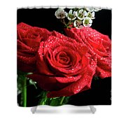 Posey Of Roses Shower Curtain by Tracy Hall
