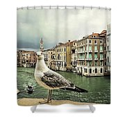 Posing For Tourists Shower Curtain