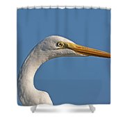 Posing Heron Shower Curtain