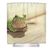Posing Tree Frog Shower Curtain