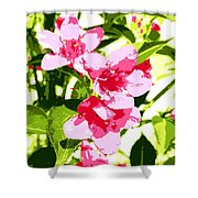 Poster Pink Shower Curtain