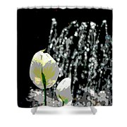 Posterized Fountain And Flower Shower Curtain