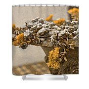 Pot Flowers  Shower Curtain