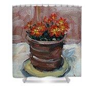 Pot Of Bee Dance Flowers Shower Curtain