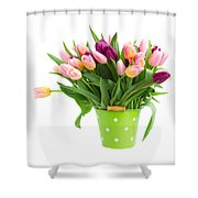 Pot Of Pink And Violet Tulips Shower Curtain