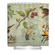 Pot-pourri Shower Curtain