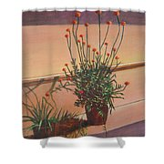 Potfull Of Bounty Shower Curtain