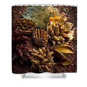 Potpourri Shower Curtain