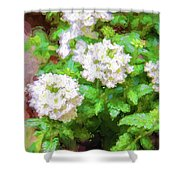 Potted Lantana Impression Shower Curtain