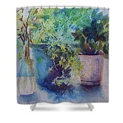 Potted Plant Study Shower Curtain