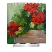 Potted Red Geraniums Shower Curtain
