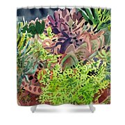 Potted Succulents Shower Curtain