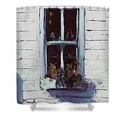 Pottery Store Window Shower Curtain