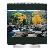 Poudre Gold Shower Curtain