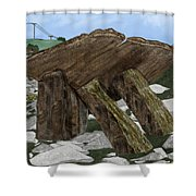 Poulnabrone Dolmen County Clare Ireland Shower Curtain