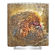 Poultry Passion Shower Curtain