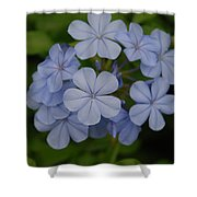 Powder Blue Flowers Shower Curtain