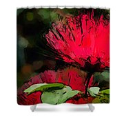 Powder Puff In Red Shower Curtain