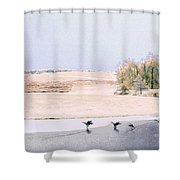 Powell Gardens In Winter Shower Curtain
