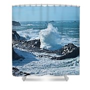 Power  Shower Curtain