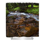 Powerful Spring Runoff Shower Curtain