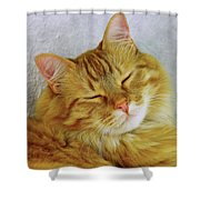 Pp Cat Shower Curtain