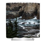 pr 118 - The Claw the print Shower Curtain