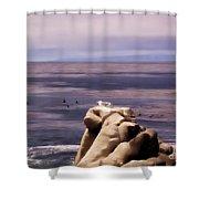 pr 132 - Nap Time in Monterey Shower Curtain