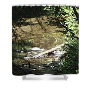 pr 134 - Babbling Brook Shower Curtain
