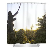 pr 139 - Broken Kachina Doll Shower Curtain