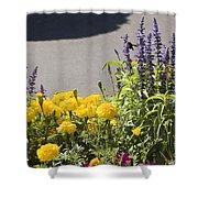 pr 141 - Flower Bed Shower Curtain