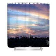 pr 244- Lone Squareo Shower Curtain