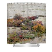 Prairie Beauty Shower Curtain