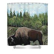 Prairie Bison Shower Curtain