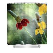 Prairie Coneflower Shower Curtain