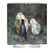 Prairie Dogs And A Bird Eating Shower Curtain