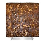 Prairie Grass Blades Shower Curtain