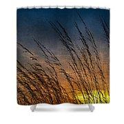 Prairie Grass Sunset Patterns Shower Curtain