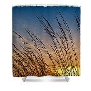 Prairie Grass Sunset Shower Curtain