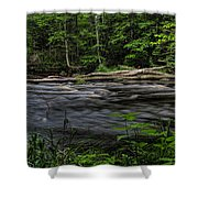 Prairie River Log Jam Shower Curtain
