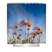 Prairie Smoke Shower Curtain